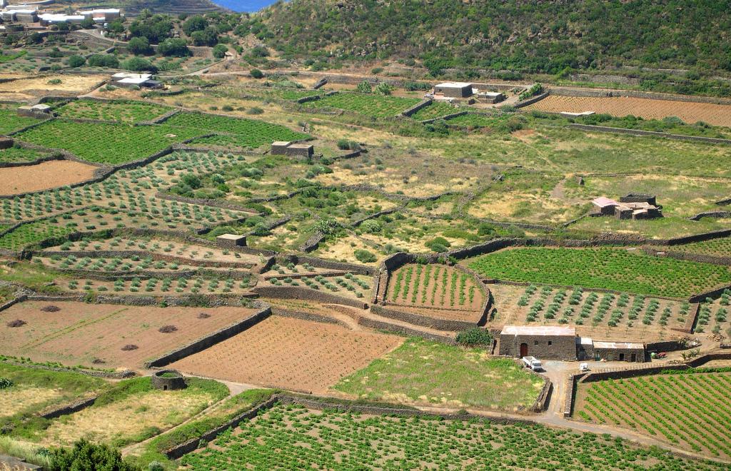 Pantelleria-Hinterland