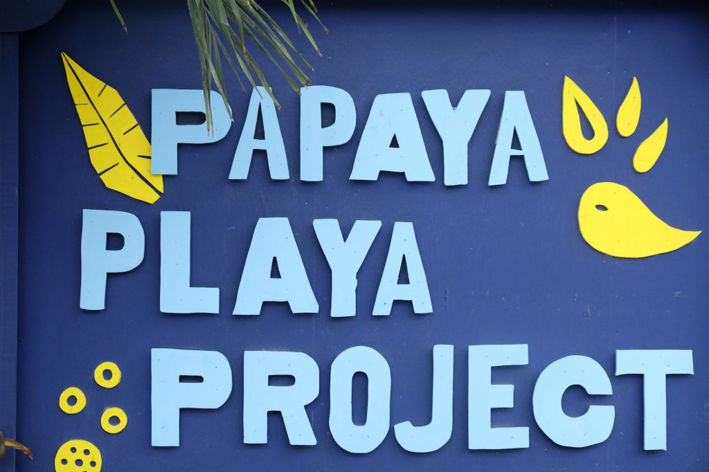 Perfectes Hideaway: Papaya Playa Project