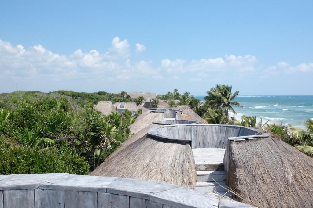 Terrasse über den Palmen