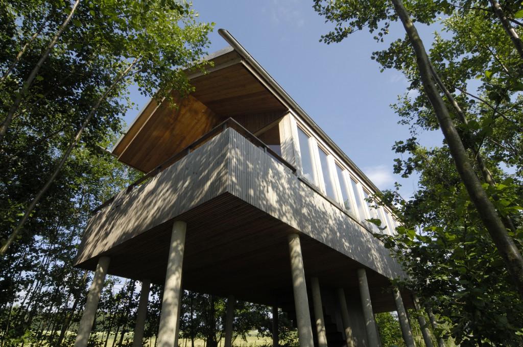 Kindheitstraum: Schlafen im Baumhaus