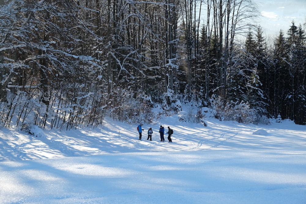 ihr könnt auch eine Skitour machen und lernen, wie man mit dem Lawinenpiepser umgeht
