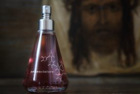 Hommage an Hollywood: <br>Holy_Wood by Nomenclature</br>