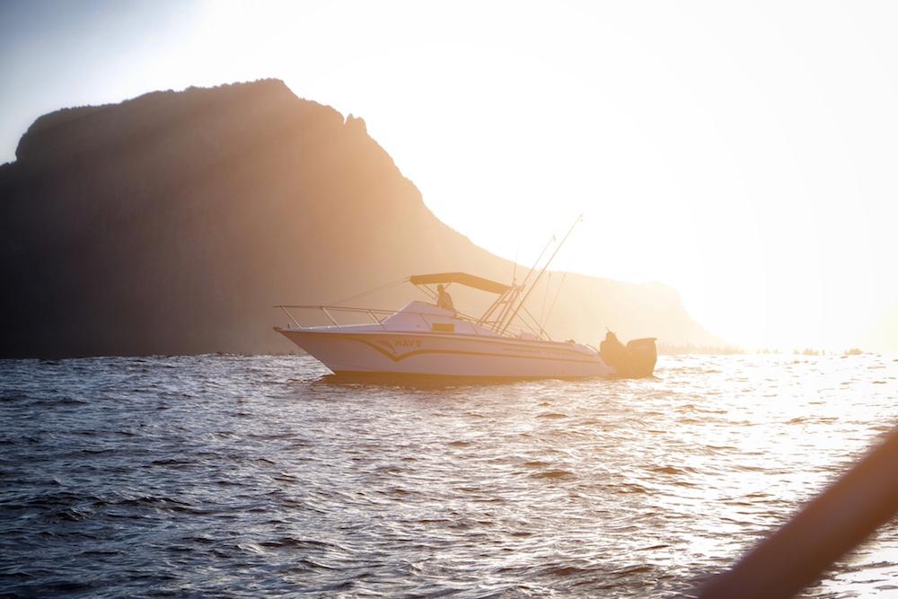 Speedboat Mauritius Delfine