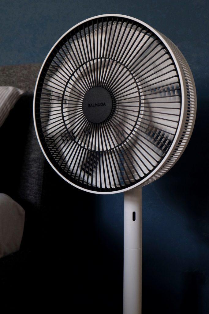 Balmuda Green Fan Ventilator