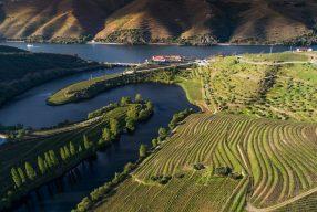 Grandiose Landschaft, feiner Wein: <br>Unterwegs im Douro-Tal</br>
