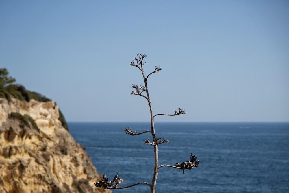 Algarve Portugal Meer